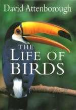 Life of Birds 1